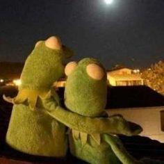BTS: MAFİA AND BABY - 5.Bölüm; Geldim Sevgilim - Sayfa 2 - Wattpad Frog Wallpaper, Cartoon Wallpaper, Cute Memes, Funny Memes, Sapo Kermit, Reaction Pictures, Funny Pictures, Les Muppets, Sapo Meme