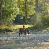 Today's expert contributor Jane Myers from the Horse Rider's Mechanic also believes that horse riders can be over-confident and that it's in fact how some of us end up becoming nervous riders in the first place. She cautions us to build our confidence gradually with these fantastic tips for getting back into the saddle safely.