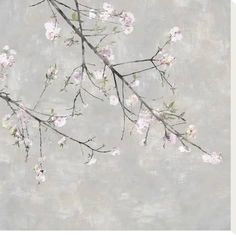 size: Stretched Canvas Print: Blossom Spray IV by Tania Bello : Using advanced technology, we print the image directly onto canvas, stretch it onto support bars, and finish it with hand-painted edges and a protective coating. White Cherry Blossom, White Cherries, Orchid Care, Spring Art, Painting Edges, Stretched Canvas Prints, Botanical Art, Bird Art, Framed Artwork
