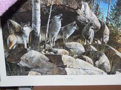"""1992 """"ROCKY OUTPOST"""" by Jim Hansel Wolf Wildlife Snowy Hill View UNFRAMED PRINT  #Realism"""