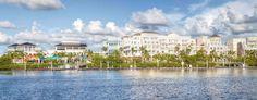 Tiger Woods To Open Restaurant in Jupiter's Harbourside Place - South Florida Bound