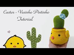 Cacto - Vasinho PINTINHO - YouTube
