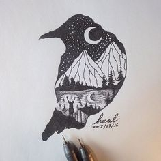 #drawing #illustration #crow