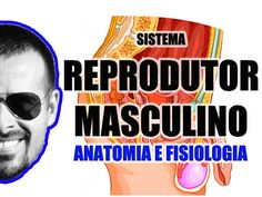 Vídeo Aula 058 - Sistema Reprodutor Masculino - Anatomia Humana - Órgãos...