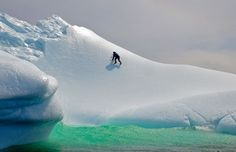 icebergs above and below water - Google Search