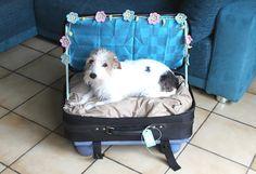 Schichtsalat: DIY Hundebett aus altem Koffer
