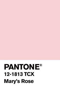 Blush Color Palette, Pantone Colour Palettes, Pantone Color, Pantone Swatches, Color Swatches, Posters Decor, Baby Pink Colour, Mood Colors, Color Psychology