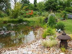 Customer Image Gallery Lovely shallow edged pond so wildlife friendly with cobbles down below the water line. Nice waterlilies for surface cover too. Love the setting in the garden too. Thanks for photo - send your pond photos to us too. #pond #water #garden