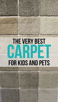 The Craft Patch The Very Best Carpet for Kids and Pets & Homearama Week 2016: Day One | Pinterest | Evolution Basements and ...