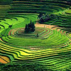 Vietnam beautiful undulating curves