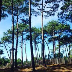 Mimizan plage de Lespecier www.guide-des-landes.com