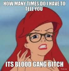 Google Image Result for http://troll.me/images/hipster-ariel/how-many-times-do-i-have-to-tell-you-its-blood-gang-bitch.jpg