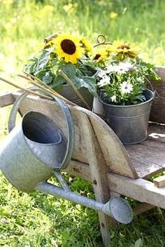 Water can on wheelbarrow with summer flowers