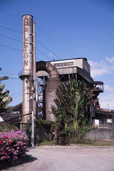 Au coeur de la Jamaïque, les secrets d'un rhum de légende Reportage Photo, Utility Pole, Food News, West Indies, Rum, Travel