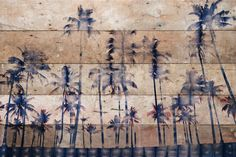 Watercolor Palms - Parvez Taj