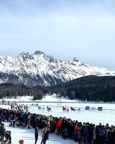 Swiss Travel, Horse Racing, Mount Rainier, Switzerland, Mount Everest, Cinema, Events, Horses, Mountains