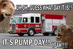 Uh oh, guess what day it is? It's pump day! Firefighters celebrate pump day every day. Firefighter School, Firefighter Family, Firefighter Paramedic, Female Firefighter, Firefighter Quotes, Volunteer Firefighter, Firefighter Crafts, Firefighter Training, Wildland Firefighter