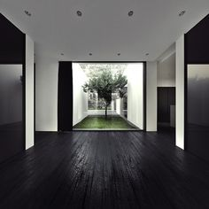 Open, high ceilings, courtyard, tree in courtyard --- Extremely modern and minimal house