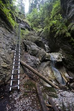 Enlarged picture of Slovak Paradise National Park (Slovakia): Metal ladder along a waterfall on a trail through Slovak Paradise Bratislava, Central Europe, Positive Inspiration, Fitness Inspiration, Ladder, Places To Go, Paradise, National Parks, Around The Worlds