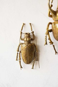 Adding nature to your home in a lavish gold colour, the Large Gold Stag Beetle Wall Decoration is great on his own or create a wall display with many. Longhorn Beetle, Putting On The Ritz, Rockett St George, Eclectic Design, Interior Design, Unique Wall Art, Antique Gold, Wall Decor, Bronze