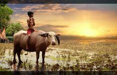 Herman Damar transforma o cotidiano de vilarejos na Indonésia em série de fotos cheia de magia