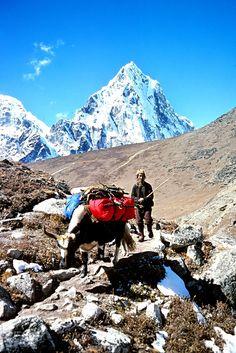 Nepal 64