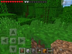 A view of the Jungle biome without the pause menu. The same seed is in the comments.