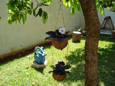 Plantando na casca do coco