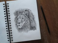 TamaraART: Charcoal pencil drawing of a lion