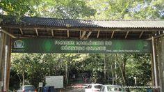 Parque Ecológico do Córrego Grande | Meus Roteiros de Viagem