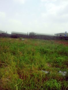 Plot of land fenced round with a tarred easily accessible road next to a commissioner's house, Behind winners chapel bashorun  #realestate #property #land #forsale #Ibadan #Nigeria