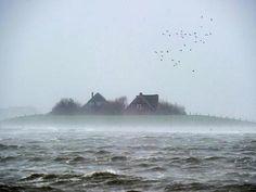 Landunter auf Hallig Langeneß. Xaver hat die nordfriesische Insel unter Wasser gesetzt.