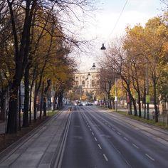 Herbst! Wien! Schön!