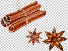 Black Pepper Plant, Chocolate Pack, Star Anise, Vector Hand, Watercolor Paintings, Watercolours, Kombucha, Culinary Arts, Cinnamon Sticks