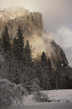 ✭ A snow covered mountain in Yosemite National Park