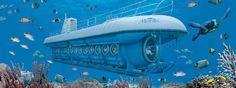 Atlantis Submarine Underwater Tour - Aruba tour operator - De Palm Tours