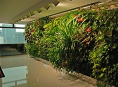 Ronald Lu Office | Vertical Garden Patrick Blanc