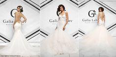 #SoMiami Galia Lahav Fall 2015 blush mermaid wedding dress, lace trumpet gown, mermaid bridal dress with sexy backless, sheath/colum gown...