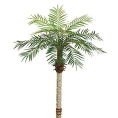 One 5 Foot Silk Artificial Phoenix Palm Tree Plant >>> Continue to the product at the image link.