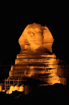 Tours in Giza Pyramids Cairo Egypt; The Sphinx of king Chefren at night in Giza, Egypt. Ancient Egypt, Ancient History, Egypt Giza Pyramids, Monuments, Places To Travel, Places To See, Visit Egypt, Shore Excursions, Egyptian Art