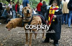 Baby Harry and Fluffy - Halloween ideas with your dog