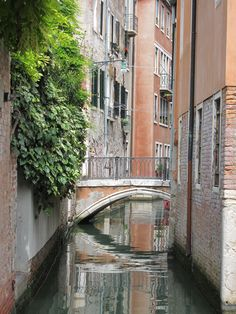#JetsetterCurator #Italy #Venice  A back alley in any other town is a photo op in Venezia.