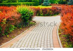 Park walkway Stock Photos, Images, & Pictures | Shutterstock