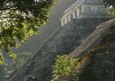 The Mayan Ruins at Palenque have the distinction of being the only ruins of Maya origins with  a central pyramid built as a funerary monument for its citizens