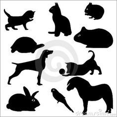 Pets dog. cat, parrot, rabbit, silhouette
