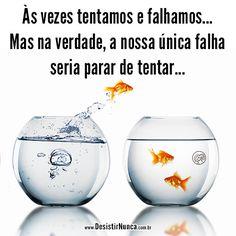As vezes tentamos e falhamos... Mas na verdade, a nossa unica falha seria parar de tentar...
