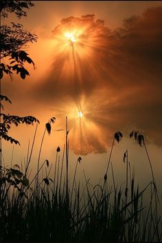 Find images and videos about nature, sunset and ♡♡♡ on We Heart It - the app to get lost in what you love. All Nature, Amazing Nature, Amazing Grace, Beautiful World, Beautiful Images, Stunningly Beautiful, Beautiful Sunrise, Beautiful Morning, Belle Photo