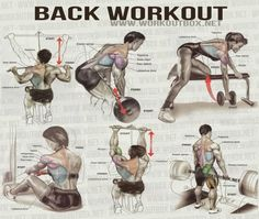 Back Workout - Healthy Fitness Workout Shoulder Delta Sixpack Ab - FITNESS HASHTAG