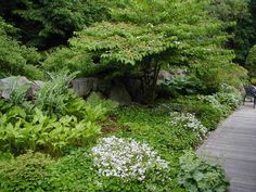 path through side yard slope - Google Search