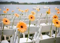 flowers in testtubes on ceremony chairs-I think this is a cool way to decorate the chairs, although with a different flower in my case.  I think the contrast of a bright flower against the barren backdrop of the Pecos ruins would be interesting.